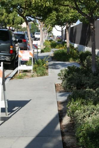 meandering sidewalk3